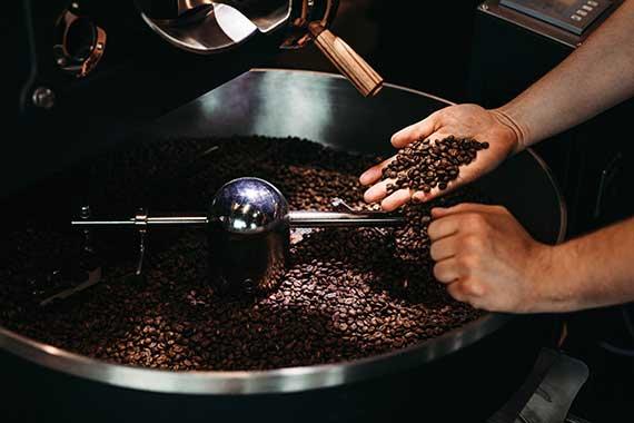 torrefazione caffè albiero giorgio